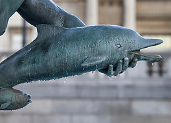 © Licensed to London News Pictures. 25/01/2021. London, UK. Small icicles form on the fountains in Trafalgar Square in central London as temperatures remain low. Yesterday saw the first snow of winter in the capital. Photo credit: Peter Macdiarmid/LNP