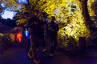 Electric Woods presents the Festival of Light at Robin Hill Country Park - 2014-10-11