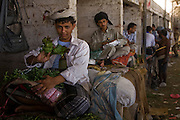 A man sells qat leaves in the souk of BinAifan, Wadi Do'an, Hadhramawt, Yemen.