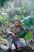 Biosphere 2 Project undertaken by Space Biosphere Ventures, a private ecological research firm funded by Edward P. Bass of Texas.  Roy Walford, former pathologist at UCLA and one of the eight inhabitants of the Biosphere, seen in the rain forest 'biome'. Walford authored a book titled The Anti-Aging Plan. He died in 2004 at age 79 of ALS. Walford had been involved in the Project since 1983, and set up the Biosphere's medical centre.  Biosphere 2 was a privately funded experiment, designed to investigate the way in which humans interact with a small self-sufficient ecological environment, and to look at possibilities for future planetary colonization.  MODEL RELEASED 1990