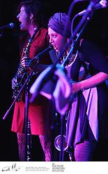 Australian klezmer punks the Barons of Tang perform at the New Zealand International Arts Festival.