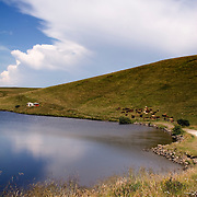 Valcano lake with cows and impressive clouds, France, Auvergne