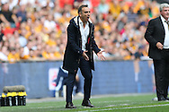 Carlos Carvalhal, the Sheffield Wednesday manager shouting at his players from the touchline. Skybet football league Championship play off final match, Hull city v Sheffield Wednesday at Wembley Stadium in London on Saturday 28th May 2016.<br /> pic by John Patrick Fletcher, Andrew Orchard sports photography.