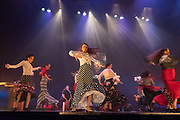 Flamenco dancers perform on stage
