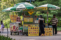 A Vendor waits in anticipation as the mystery lady makes her decision. Central Park, New York City.<br /> Food cart near the south-west corner of the reservoir in Central Park