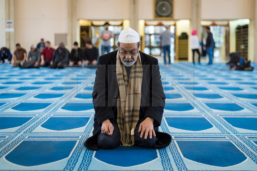 © Licensed to London News Pictures. 03/03/2019. LONDON, UK. A worshipper takes part in prayers during Visit My Mosque Day at London Central Mosque near Regent's Park.  Over 150 mosques across the UK have held open days backed by the Muslim Council of Britain (MCB), to show non-Muslims more about the religion and its part in the local community.  Photo credit: Stephen Chung/LNP