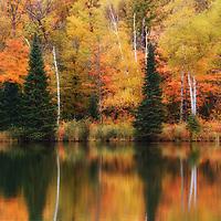 """Lake Plumbago Reflections""<br /> <br /> Beautiful autumn reflections on Lake Plumbago in Alberta Michigan!"