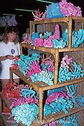 dyed coral skeletons for sale in Florida gift shop, <br /> Key Largo, Florida Keys ( Western Atlantic Ocean )<br /> MR 147