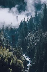 THEMENBILD - Gebirgswasser fließt durch Nadelwald, der von Nebel durchzogen wird, aufgenommen am 30. April 2020, Kaprun, Österreich // Mountain water flows through coniferous forest, which is crossed by fog on 2020/04/30, Kaprun, Austria. EXPA Pictures © 2020, PhotoCredit: EXPA/ Stefanie Oberhauser