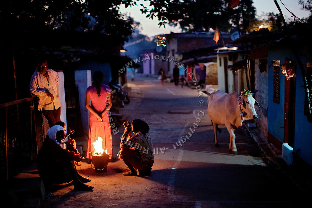 People are warming up near the fire while an adorned cow is walking by during a cold evening in Oriya Basti, one of the water-affected colonies near the abandoned Union Carbide (now DOW Chemical) industrial complex, site of the infamous 1984 gas tragedy in Bhopal, Madhya Pradesh, central India. The poisonous cloud that enveloped Bhopal left everlasting consequences that today continue to consume people's lives.