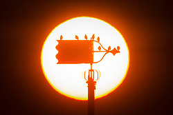 © Licensed to London News Pictures. 27/02/2019. Whitby UK. Birds sit on the weather vane on top of the Church of Saint Mary in Whitby as the sun set last night on the Yorkshire coast. Photo credit: Andrew McCaren/LNP