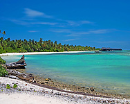 Beach with Palm Trees and white Sands, in this image we see a wide-angle photograph of a Maldivian beach in the Indian Ocean with palm trees, golden sands and beautiful blue waters. The photograph is taken from one of the island atolls and shows the protected bay of this dream like paradise surrounded by a coral reef keeping the open ocean at bay. <br /> <br /> This image is ready to download for personal or commercial use and to order as a limited edition print. I will only make available 50 prints of this image, you can choose to have it printed on canvas or as a framed or unframed print ensuring you have an exclusive peace of highly collectable photo art to add to any home or business.