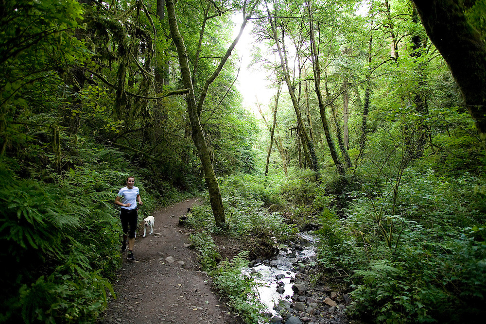 Runners and hikers along Lower Macleay Trail in Forest Park, Portland Oregon
