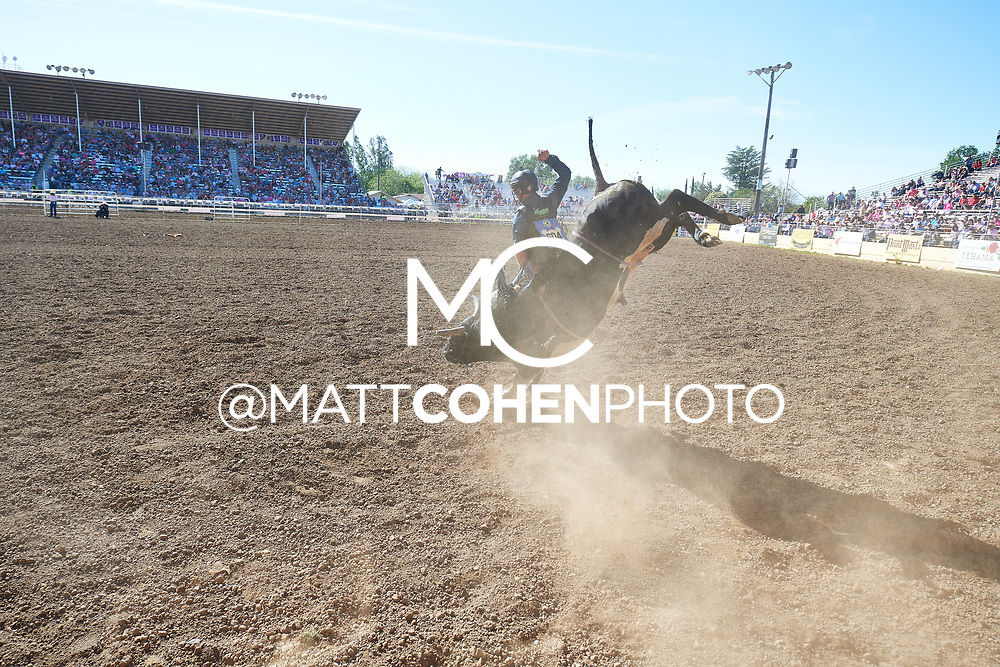 Thor Hoefer / 35 Spotted Demon of Julio Moreno, Red Bluff 2019<br /> <br /> <br />   <br /> <br /> <br /> File shown may be an unedited low resolution version used as a proof only. All prints are 100% guaranteed for quality. Sizes 8x10+ come with a version for personal social media. I am currently not selling downloads for commercial/brand use.