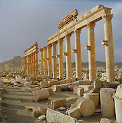 Columns in the Roman ruins at the ancient city of Palmyra, Syria
