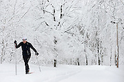 Man cross-crountry skying in Snow covered Mont Royal Park in Winter, Parc du Mont Royal, Montreal, Quebec, Canada