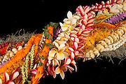 Hawaii flower lei strand