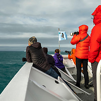 Guests on the bow of the National Geographic Orion look for wildlife in Royal Bay on the north coast of South Georgia Island.