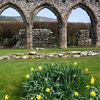 Europe, United Kingdom, Wales. Cymer Abbey in Gwynedd, a Welsh Historic Monument of CADW.