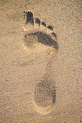 Footprint in the sand,
