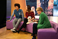 Crufts 2019 shot for The Kennel Club.<br /> Picture date: Thursday March 7, 2019.<br /> Photograph by Christopher Ison ©<br /> 07544044177<br /> chris@christopherison.com<br /> www.christopherison.com