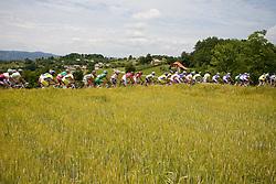 Peloton at Gabrje at 4th stage of Tour de Slovenie 2009 from Sentjernej to Novo mesto, 153 km, on June 21 2009, Slovenia. (Photo by Vid Ponikvar / Sportida)