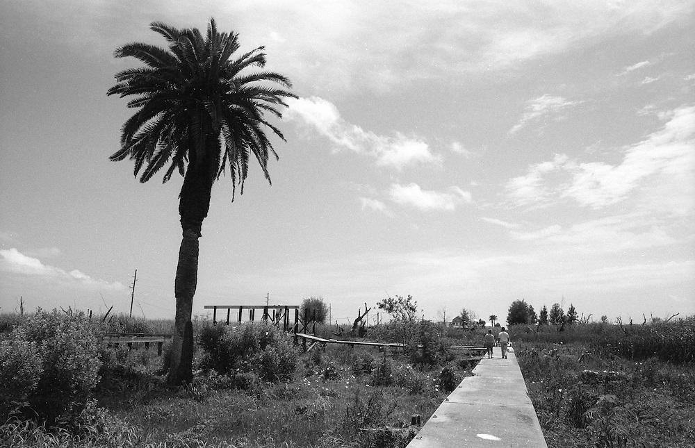 Pilottown, LA, 4/08
