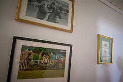 Reynolds Judy, IRL<br /> At home with - Dorsten 2017<br /> © Hippo Foto - Dirk Caremans<br /> 05/07/17