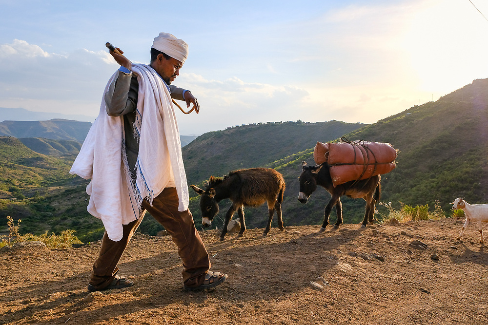 Shepherd near Lalibela. With around 54 million head of cattle, 25.5 million sheep and 24.06 million goats, Ethiopia is first in Africa and fifth in global position for livestock resources.
