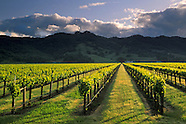 Mendocino Wine Country