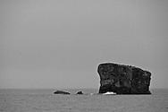 Sea birds on a rock in Kukay Bay in Katmai National Park in Alaska. ©Brett Wilhelm