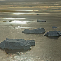 ANTARCTICA. Icebergs in South Pacific Ocean, off Antarctic Peninsula.