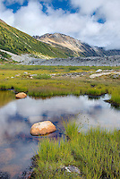 Athelney Pass, Coast Mountains British Columbia Canada