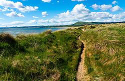 View of Fife Coastal Path in sand dunes at at Dumbarnie on  Largo Bay, Fife, Scotland, UK