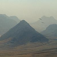 Sandstorm haze & ravens above peaks north of Wadi Rum, Jordan.