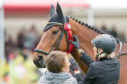 Ingrid Klimke attaches her second place rosette to Horseware Hale Bob - Jumping - Mitsubishi Motors Badminton Horse Trials - CCI4* - Badminton, Gloucestershire, United Kingdom - 10 May 2015