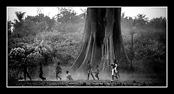 Boys play soccer underneath an enormous Bontang tree. Though the Fulani are a Muslim tribe, they also believe that this tree has a spirit. This mixture of animist beliefs and Islamic law creates a society that has a great respect for the land around them, the supernatural world and the laws of God. Dembel Jumpora is nestled in the eastern part of the West African country of Guinea Bissau. The climate is hot and humid but by the end of the dry season, there is little water to be found above ground. The children take advantage of the rains and spend a great amount of time swimming in the touffe. Much of West Africa is only known for its civil wars and poverty but beyond the paved roads and beaten orange paths, there exists a beautiful culture still in touch with the nature around it. (Photo by Ami Vitale)