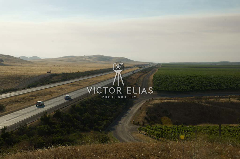 Highway with vineyards on background. Lompoc, California. USA