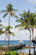 A vertical image of the Kapahulu Groin in Waikiki, Hawaii.