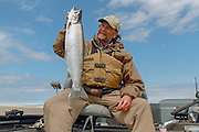 Atlantic salmon caught in Chequamegon Bay of western Lake Superior, Wisconsin, U.S.