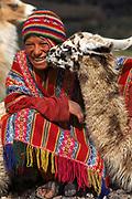 Indian Boy with Llama<br />Llama glama<br />near Cusco, PERU  South America