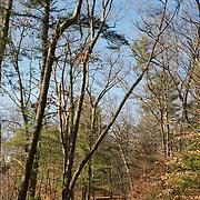 Walking path at Appleton Farms & Grass Rides, Ipwsich, MA