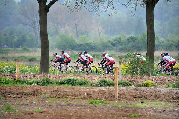 Nederland, Nijmegen, 16-5-2012Een groep mannen, vrienden, fietsen op hun sportfietsen door de Ooij.Foto: Flip Franssen/Hollandse Hoogte