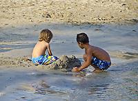 Marine life and Hawaiiana in Kona and the Hawaiian Islands.