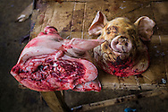 Freshly severed pig heads on a table in a market of Dong Van District, Ha Giang Province, Vietnam, Southeast Asia