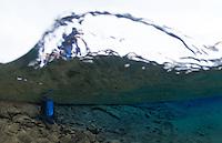 Silfra, Thingvellir lake, Thingvellir National Park, Iceland<br /> Model release by photographer