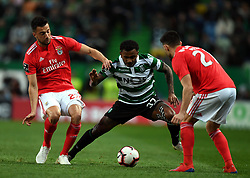 LISBON, Feb. 4, 2019  Wendel (C) of Sporting vies with Samaris (L) of Benfica during the Portuguese League soccer match between SL Benfica and Sporting CP in Lisbon, Portugal, Feb. 3, 2019. Benfica won 4-2. (Credit Image: © Xinhua via ZUMA Wire)