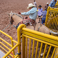 090514       Cable Hoover<br /> <br /> Anzio Harvey springs from the chute during the saddle bronc competition of the Navajo Nation Fair Rodeo in Window Rock Saturday.