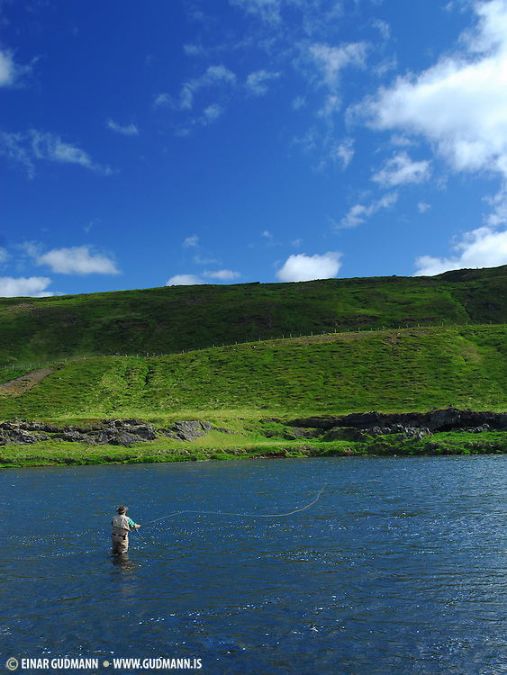 Casting for brown trout