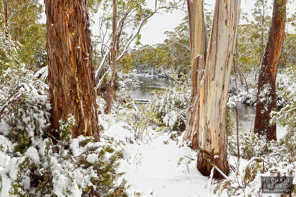 Winter scene at the Narcissus River, Central Highlands of Tasmania.<br /> <br /> Code: LADC0004<br /> <br /> Limited Edition of 125 Prints